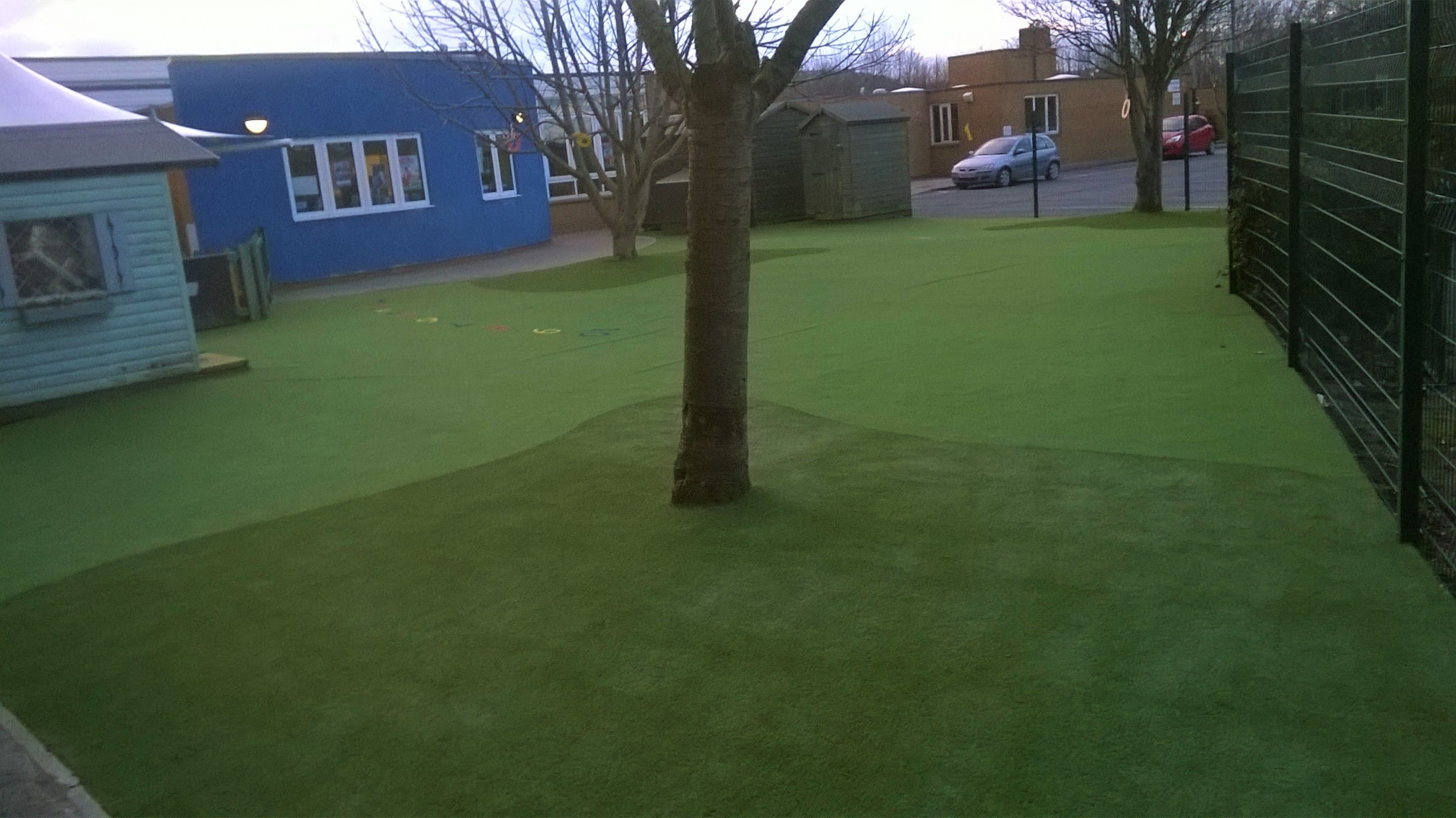 Mud Free at Chaloners with turf cut around a tree
