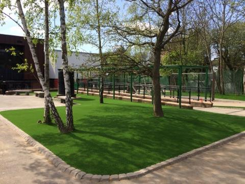 view of artificial grass which has been cut around trees